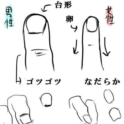 男女の爪の違いを表したイラスト