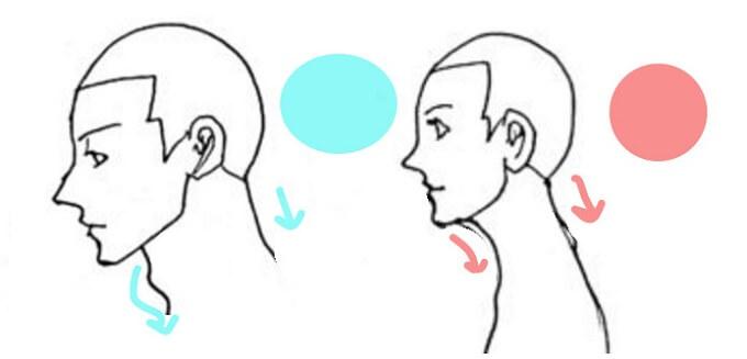 男性と女性の横顔の違いと特徴を描いたイラスト